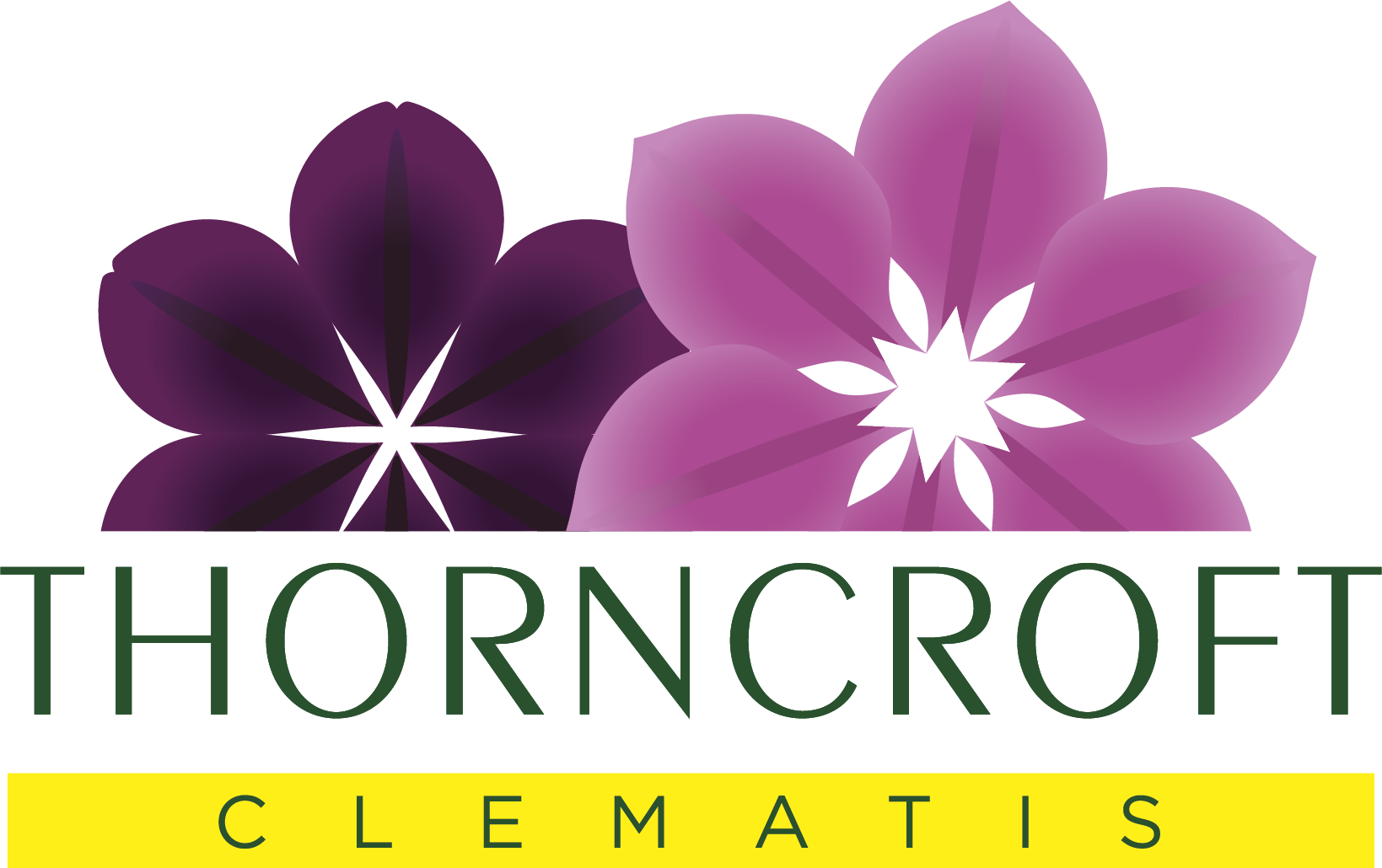 Thorncroft Clematis Logo
